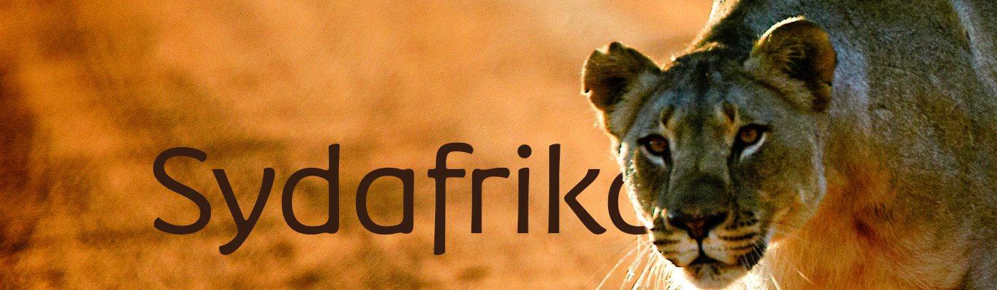 albatross resor sydafrika