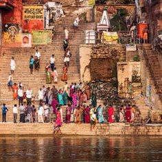 Rundresor Indien: Hitta din gruppresa till Indien hos Albatros Travel