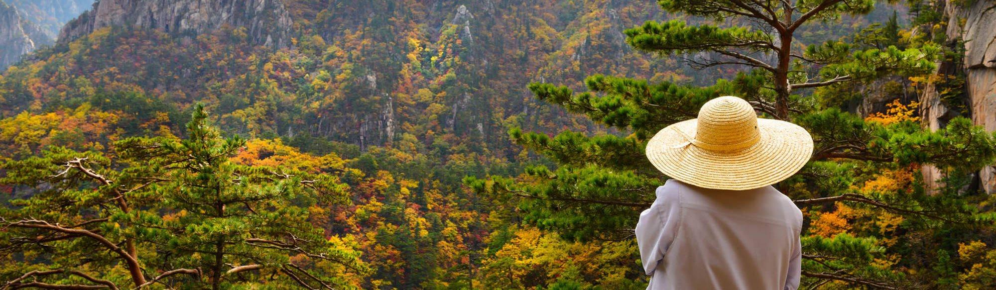 livet i Sydkorea dating